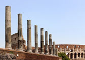 Colosseum and Forum Romanum, Details — 图库照片