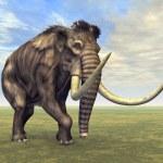 ������, ������: Mammoth