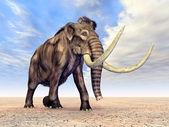 Mammoth — Stock Photo