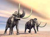 Mammoths — Stock Photo