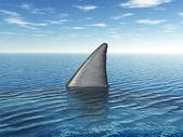 Grote witte haai fin — Stockfoto