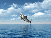 Great White Shark Jumping — Stock Photo