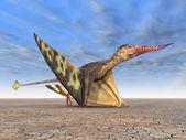 Pterosaur Rhamphorhynchus — Stock Photo