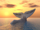 Tail Fin of a Sperm Whale — Stock Photo
