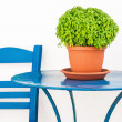 Blue chair and table with basil flowerpot — Stock Photo