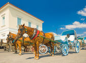 Traditional horse drawn taxis on the island of Spetses, Greece — Stock Photo