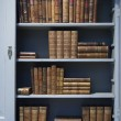 Old books — Stockfoto #12822370