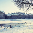 Winter in the Hague - Stock Photo