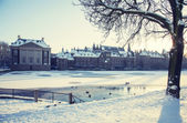 Winter in the Hague — Stock Photo
