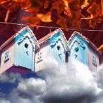 Autumn bird houses — Stock Photo