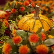 Pumpkin decoration — Stock Photo