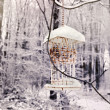 Winter bird house — Stock Photo #18860497