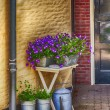 Flowers enter to home door — Stock Photo