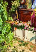 花の店 — ストック写真