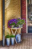 Flores digite a porta de casa — Fotografia Stock