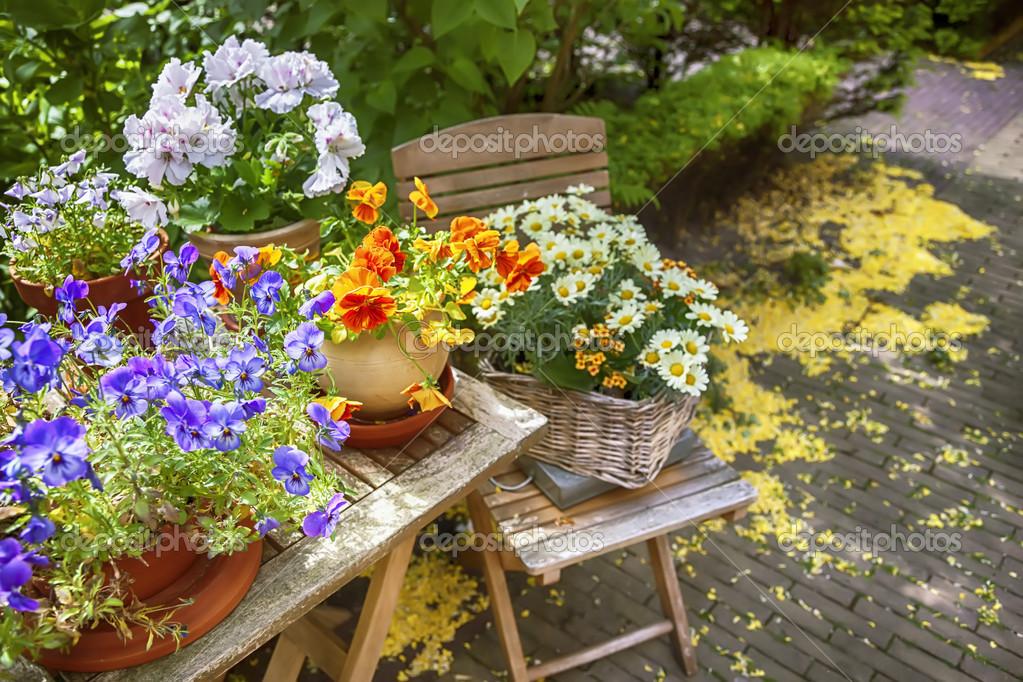 What Wedding Flowers are in Season in Spring  Teleflora