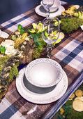 Winter party table — Stok fotoğraf
