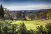 Spring golf field  — Stock Photo