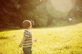 Glad liten pojke i parken — Stockfoto