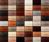 Kolaż, włosy kolory zestaw — Zdjęcie stockowe
