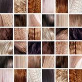 Collage, haar kleuren instellen — Stockfoto
