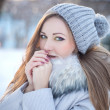 Stock Photo: Beautiful winter portrait