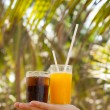 Cocktail and palm trees — Stock Photo