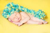 Bella addormentata neonato — Foto Stock
