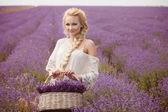 Retrato romântico de mulher bonita no campo de lavanda — Foto Stock