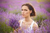 романтический портрет красивой женщины на поле лаванды — Стоковое фото