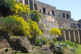 Ancient wall and ruins surrounding the lost city of Pompeii — Stock Photo