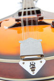 Country mandolin 2 — Stock Photo
