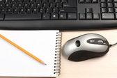 Kalem ve fare — Stok fotoğraf