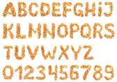 Alfabeto de frutos secos — Fotografia Stock