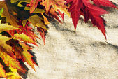 Leaves on sack background — Stock Photo