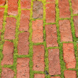 Stock Photo: Brick roadway