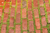 Brick roadway — Stock Photo