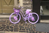 Purple bicycle with lavender. The Spring, Italy. — Stock Photo