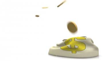 Parayı çantaya düşen paraları. — Stok video