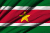 Suriname — Stock Photo