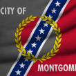 Flag of Montgomery — Stock Photo
