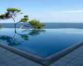 Swimming pool and pine on the beach — Stock Photo