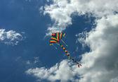 Kite — Stock Photo