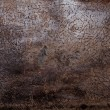 Stockfoto: Aged leather