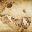Photo: Spooky skull diabolical creatures. Vintage styled background