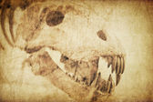 Spooky skull diabolical creatures. Vintage styled background — Stock Photo