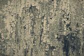 Cracked paint texture, sepia toned — Stock Photo
