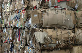 Recycled Cardboard — Stock Photo