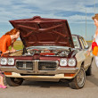 Stock Photo: Old Americcar brokedown