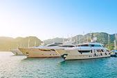 Luxuriously boats — Stock Photo